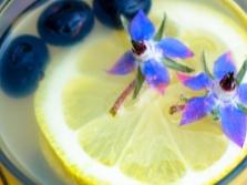Лимонад из бурачника