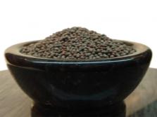 Семена черной горчицы