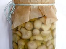 Маринованные грибы дождевики
