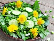 Салат с листьями одуванчиков