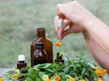 Использование масла календулы в медицине