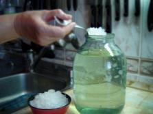 Процесс приготовления кваса из морского риса