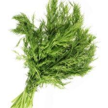 Пучок зелени фенхеля