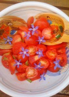 Полезные блюда с бораго
