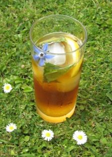 Полезный лимонад с огуречной травой