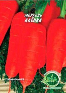 Морковь посадка и уход в открытом грунте на урале
