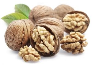 Грецкий орех из семейства Ореховые