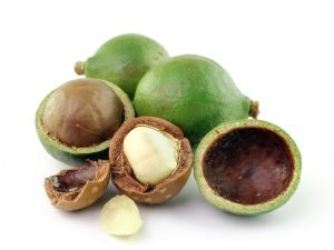Австралийский орех - макадамия