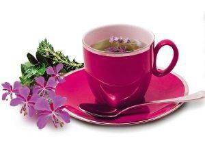 Как заваривать иван-чай правильно, копорский чай
