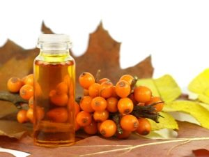 Облепиховое масло при гастрите: целительные свойства и особенности применения