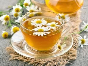 Ромашковый чай: польза и вред, правила приготовления и применения