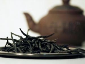Чай «Кудин»: описание, польза и вред, советы врачей