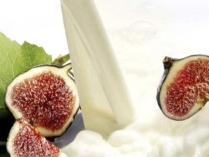Чем полезен инжир с молоком и как употреблять лечебное средство от кашля?