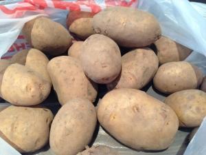 Картофель «Леди Клер»: характеристика и особенности выращивания