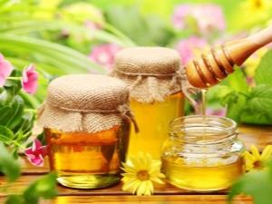 Насколько сладок янтарный продукт пчеловодства и почему?
