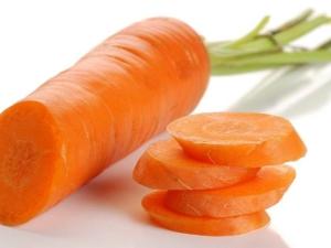 Отличительные черты сорта моркови «Самсон»