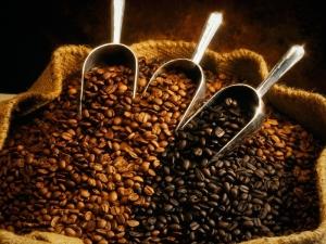 Правила выбора кофе в зернах