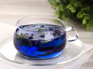Синий чай: воздействие на организм и особенности заваривания