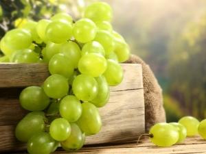 Сорта белого винограда: описание и сравнение