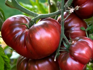 Томат «Арбузный»: характеристика и советы по агротехнике