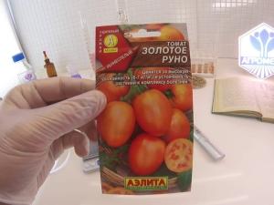 Томат «Золотое руно»: характеристика и процесс выращивания