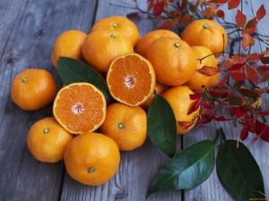 Апельсин – фрукт или ягода, с чем его лучше сочетать и как выбрать?