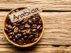 Арабика: характеристика и советы по выбору
