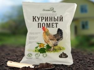 Как использовать куриный помет для удобрения огурцов?