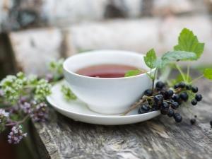 Как собрать и высушить листья смородины для чая?
