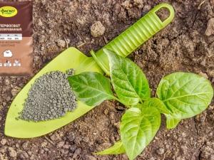 Какие удобрения лучше использовать для картофеля?
