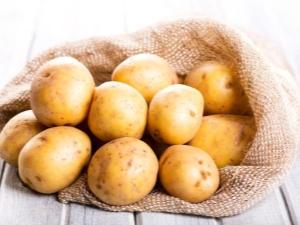 Картофель: характеристика, сорта и использование