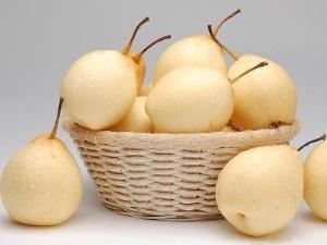 Китайская груша: польза и вред, калорийность