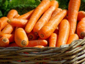 Морковь: свойства и особенности употребления
