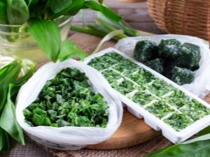 Можно ли замораживать зеленый лук в морозилке?
