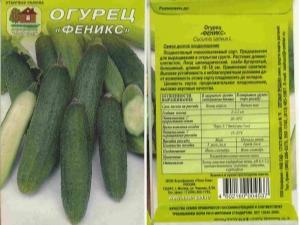 Огурцы «Феникс»: особенности и выращивание