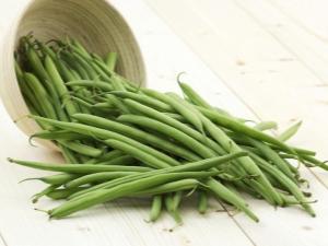 Спаржевая фасоль: выращивание и использование овоща