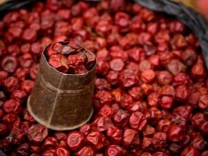 Сушеная вишня: полезные свойства и калорийность продукта