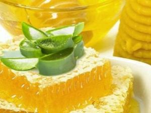 Алоэ с медом: приготовление, лечебные свойства и противопоказания