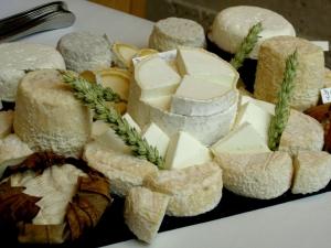 Белый сыр: названия и виды