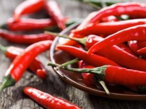 Польза и вред стручкового красного перца