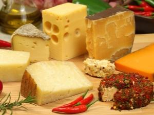Виды и сорта сыра