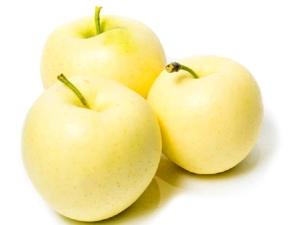 Яблоки «Белый налив»: описание сорта, выращивание и уход