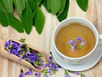 Чай из шалфея: польза и вред, как пить чай в пакетиках, лечебные свойства, противопоказания и инструкция по применению