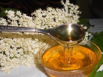 Бузинный мед