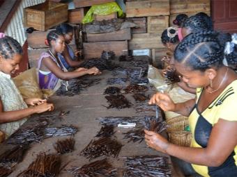 Производство ванили