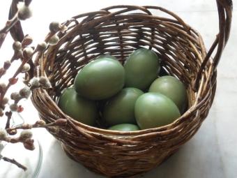 Яйца крашенные шпинатом