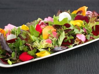 Салат с розовыми лепестками
