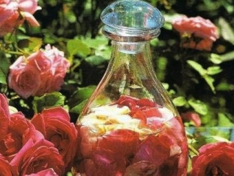 Настой из лепестков роз