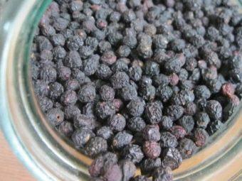 Состав ягод черной черемухи