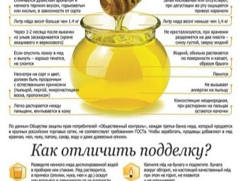 Вкус и цвет хлопкового меда